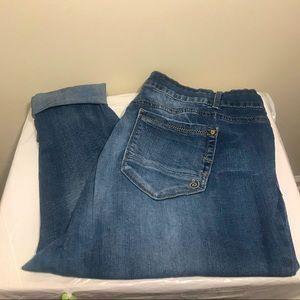 Indigo Rein Ankle Mid Wash Jean Size 22R